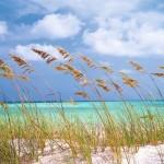 Komar ocean Breeze Fotobehang